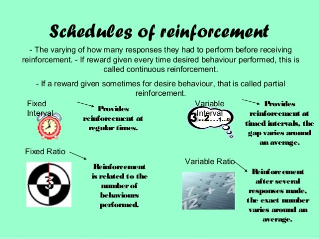 operant-conditioning-and-reinforcement-psychology-alevel-3-638